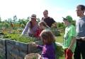 Junges Stadtgemuese - Garten(er)leben fuer Kinder und Familien.JPG