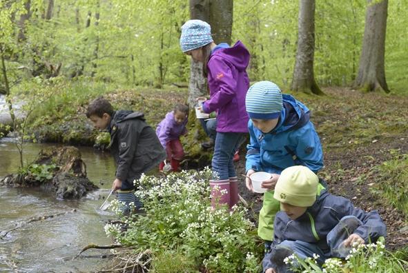 Natur erleben 2018_gwt Starnberg GmbH.jpg
