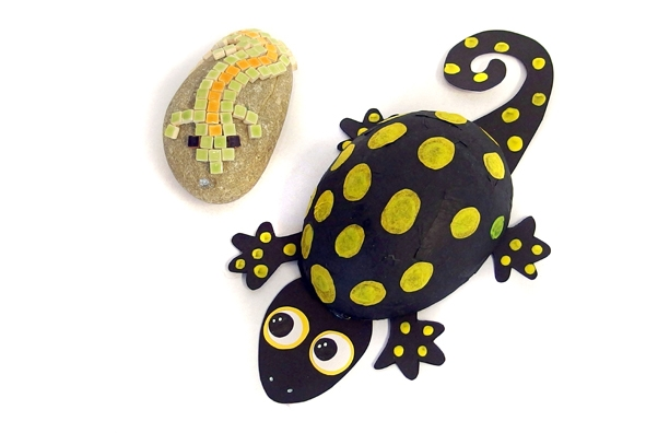 Chamaeleons und Geckos.jpg
