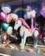 BallonCentrum_1.jpg