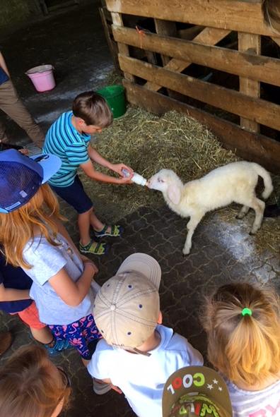 Famlienausflug vom Montessori Kinderhaus zum Archehof Schlickenrieder_2.jpg