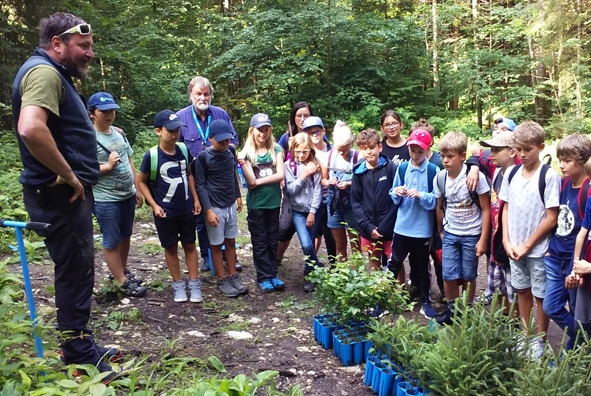 Wald Gebirg und Koenigstraum Mythos Bayern.jpg