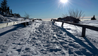 Winter_Nationalpark_Bayerischer_Wald_01.png