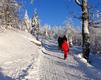 Winter_Nationalpark_Bayerischer_Wald_02.png