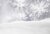 Schnee Winter.jpg