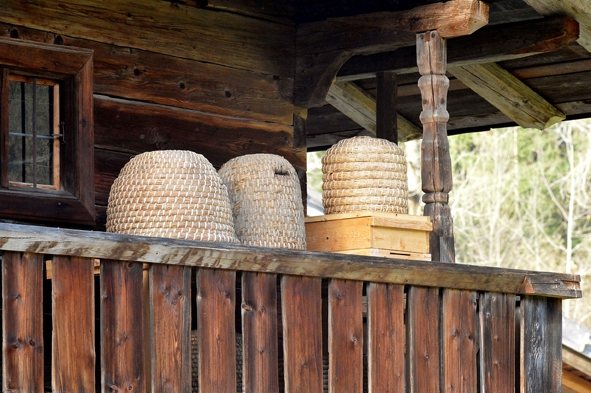 Tag der Bienen