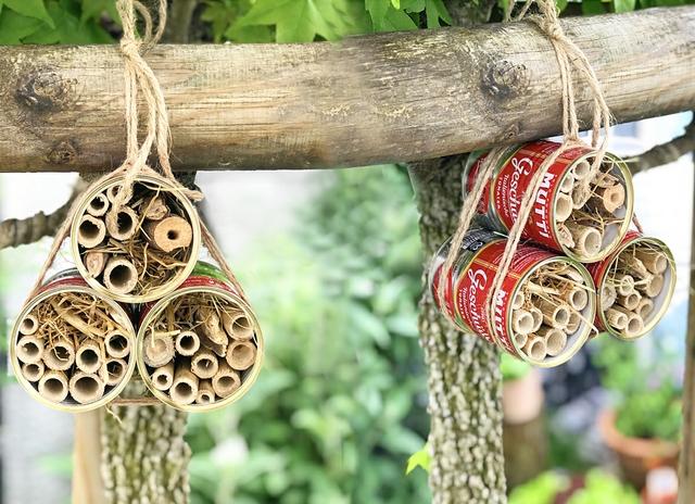 Bienenhotel_juni20.jpg