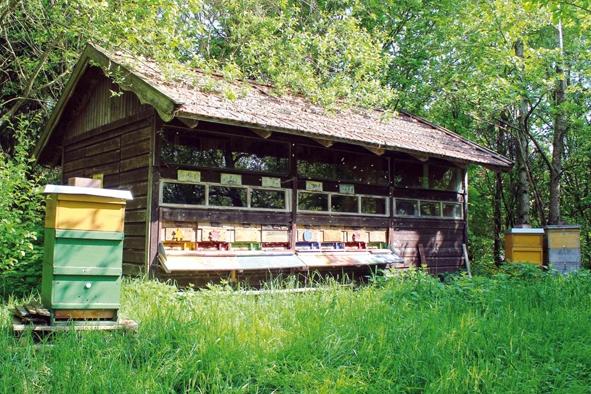 Herrmannsdorfer Bienengarten