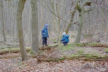 Waldkindergarten Lumberjack